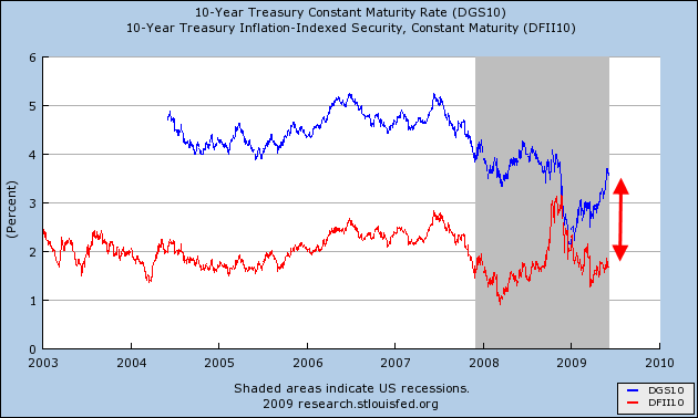 10-year-treasury-notes-vs-tips-june-20091